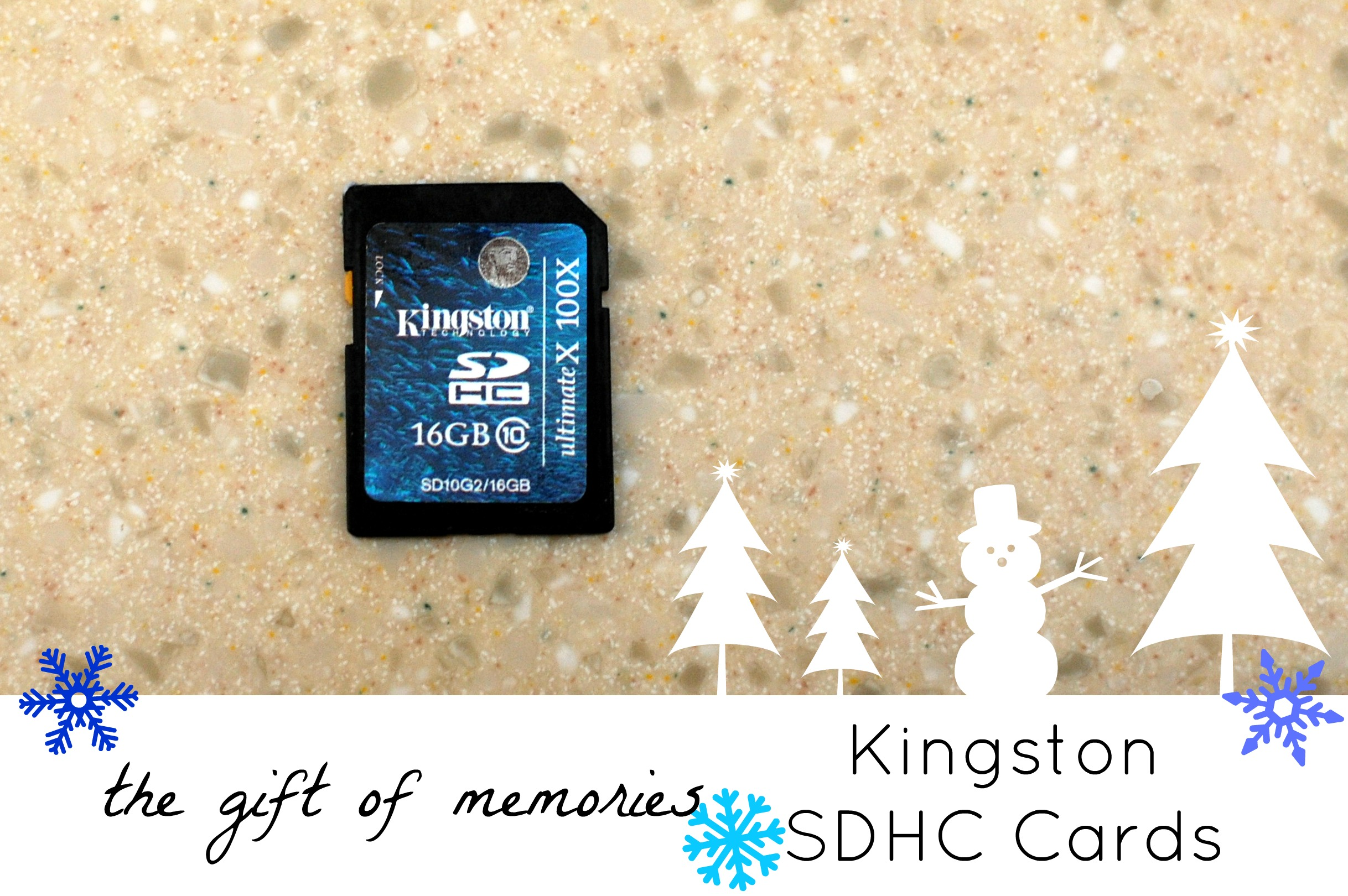 Kingston SDHC Cards gift of memories