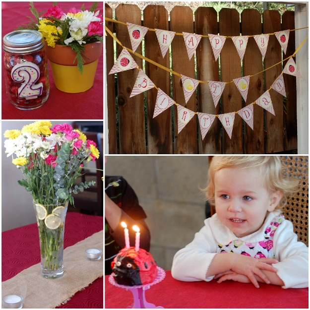Ladybug Lemonade Birthday Party