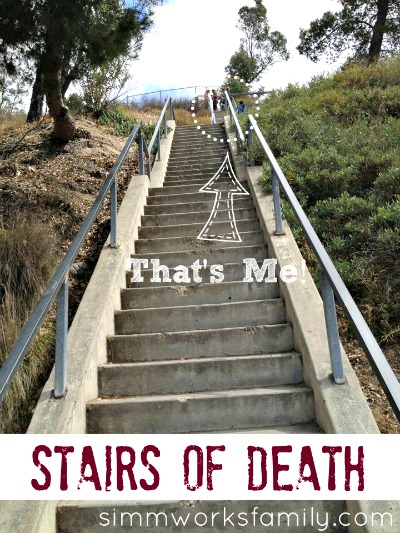 Nutrisystem stairs of death exercise