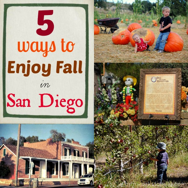 5 ways to enjoy fall in san diego