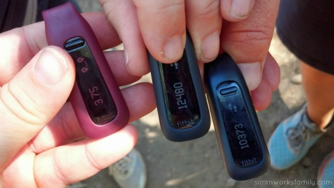Fitbit One display