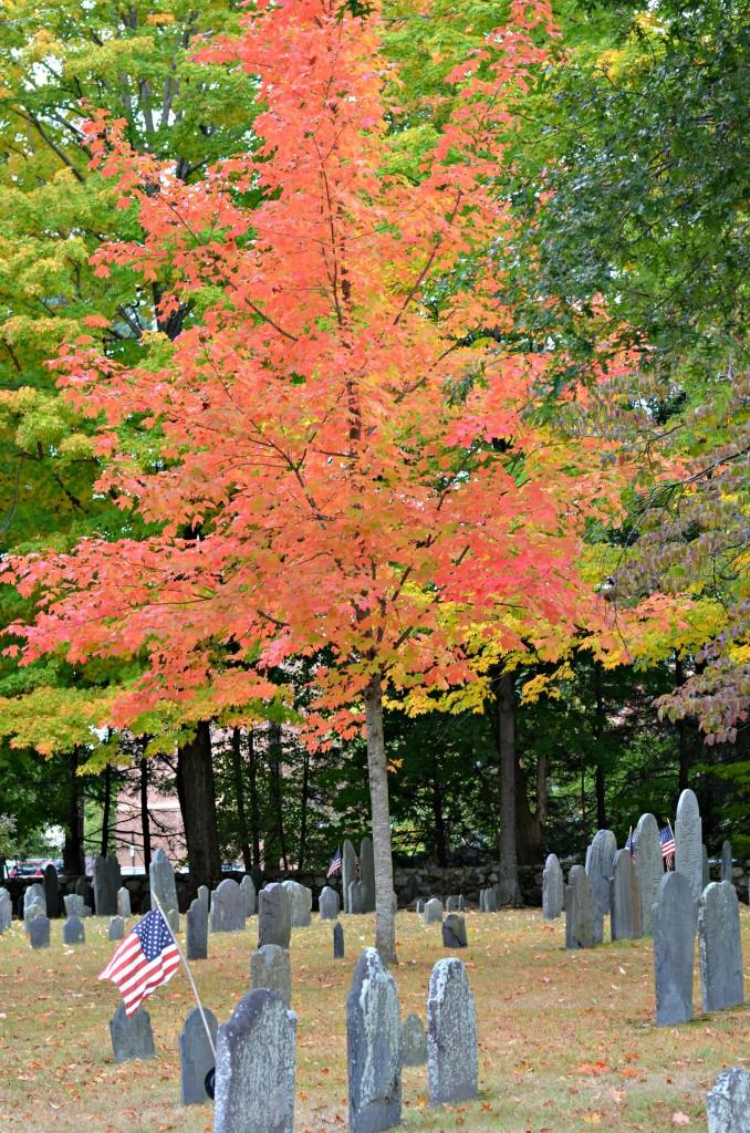 st bernard's cemetery boston trip 2013