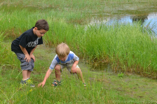 Hunting Bugs with Cousins