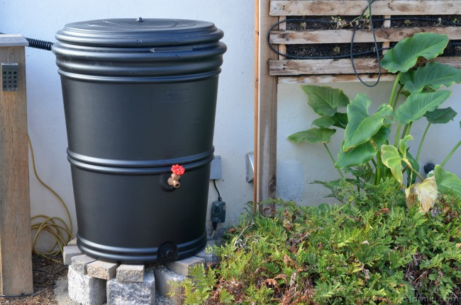 rain barrel rebate program san diego