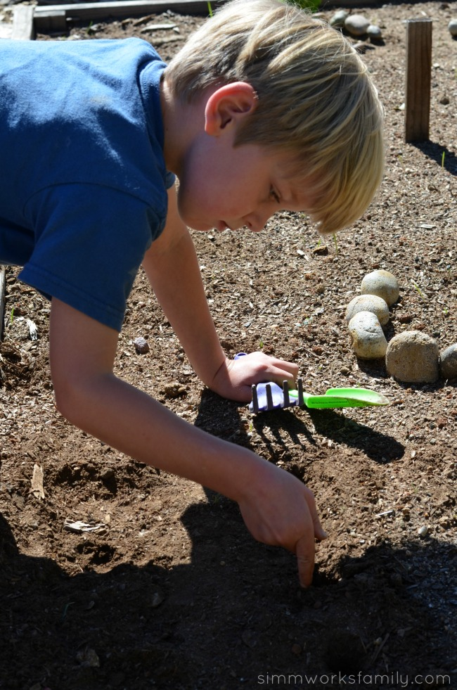 How to Grow Carrots with Kids plant seeds