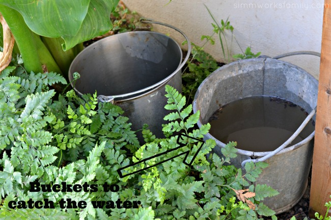 build a vertical garden buckets for run off