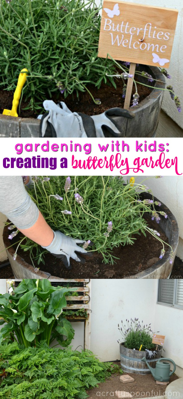 Want to attract more butterflies to your yard? By creating a butterfly garden, you allow the butterflies to have a space to eat, rest, and flutter around so they feel comfortable fluttering about throughout the year!