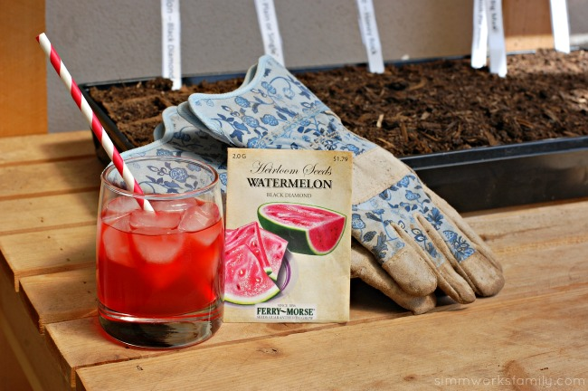 DIY Fruit Juice Dyed Watermelon Windsock enjoying KoolAid