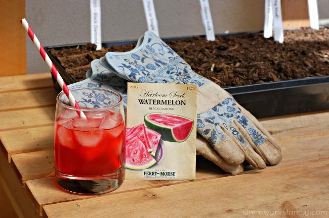 DIY Fruit Juice Dyed Watermelon Windsock enjoying KoolAid