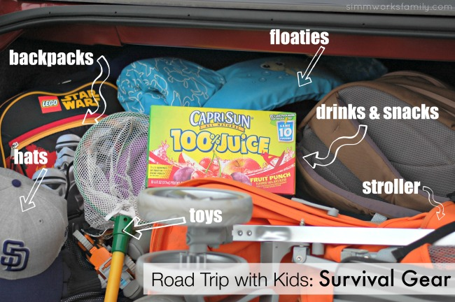 Road Trip with Kids Survival Gear