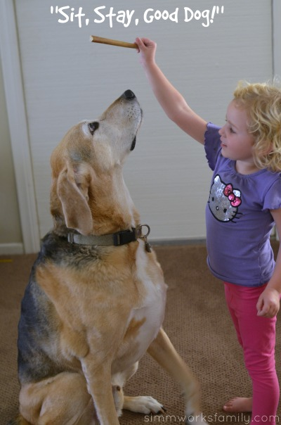 Dog Safety for Kids - training with treats