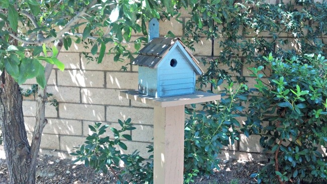 DIY Birdhouses inspiration