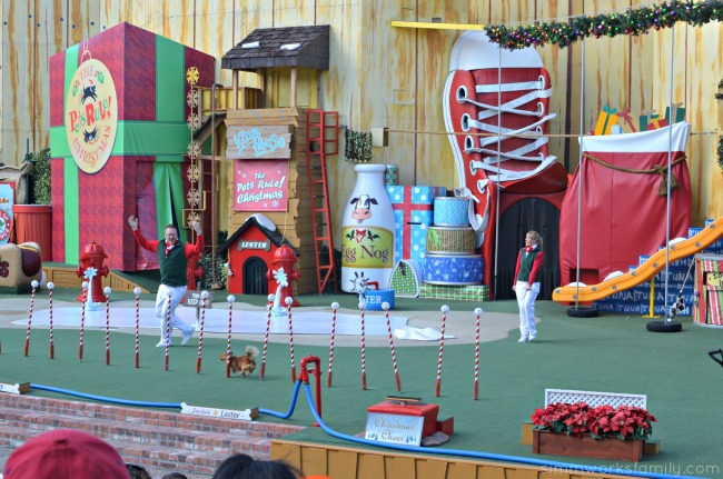 SeaWorld's Christmas Celebration - Pets Rule Christmas show