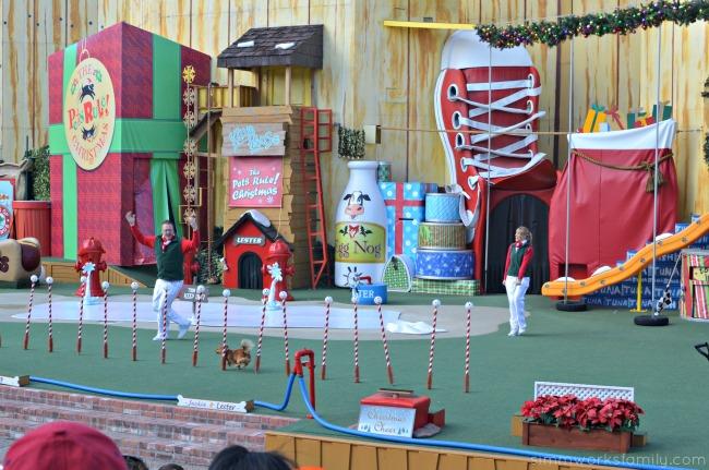 SeaWorld's Christmas Celebration - Pets Rule Christmas show