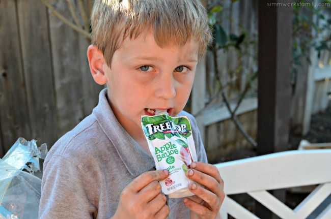 DIY Milk Carton Bird Feeder - Tree Top Apple Sauce Pouches