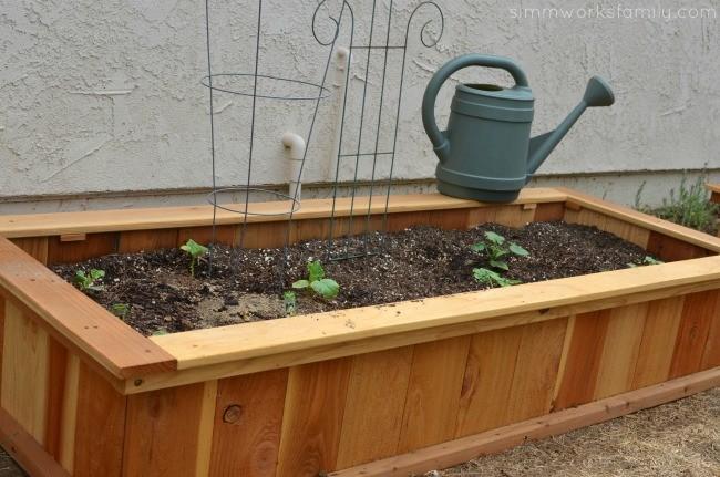 Green Work of Art in the Garden