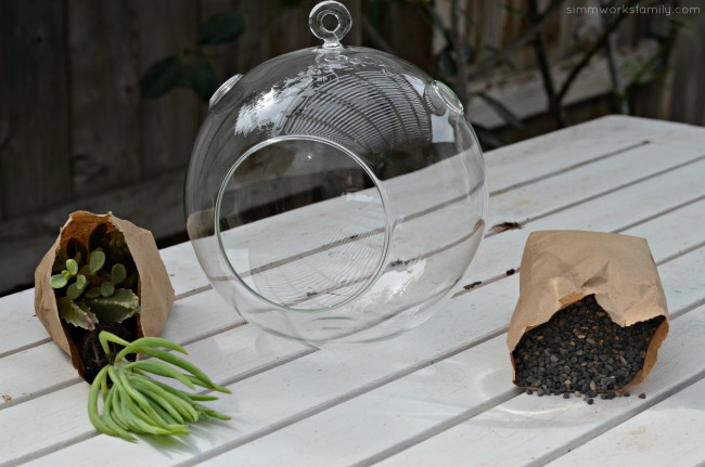 How To Make A Simple Succulent Terrarium - 3 simple things
