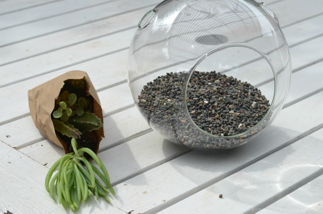 How To Make A Simple Succulent Terrarium - add rocks