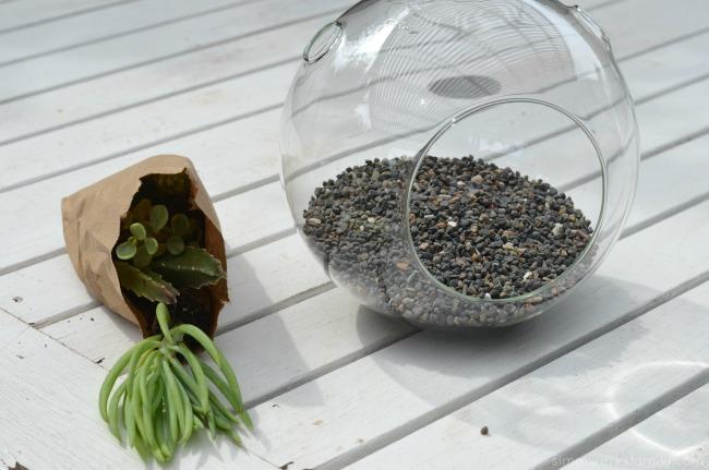 How To Make A Simple Succulent Terrarium - add rocks