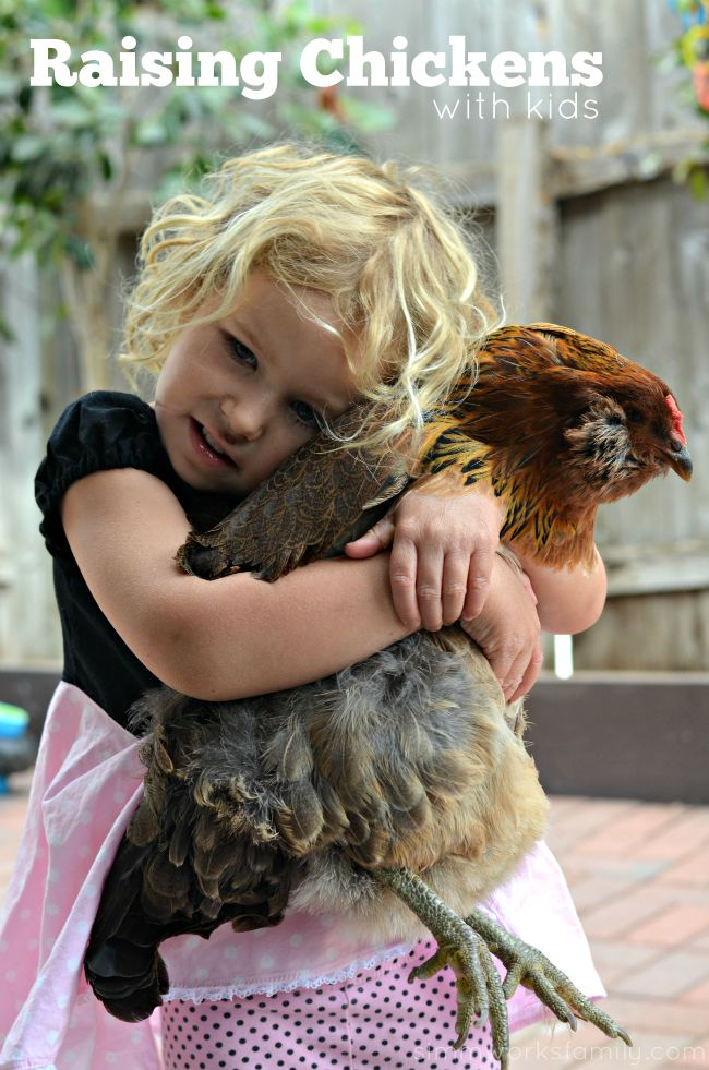 Raising Chickens In San Diego With Kids