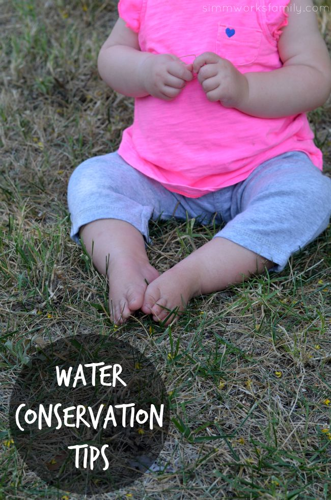 Water Conservation Tips What Can You Do