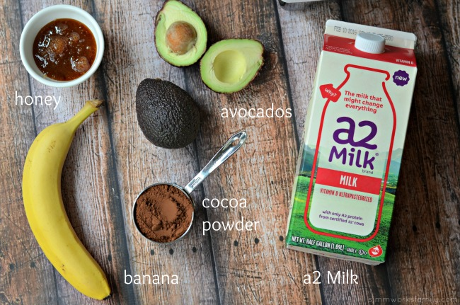No Cook Chocolate Avocado Pudding ingredients