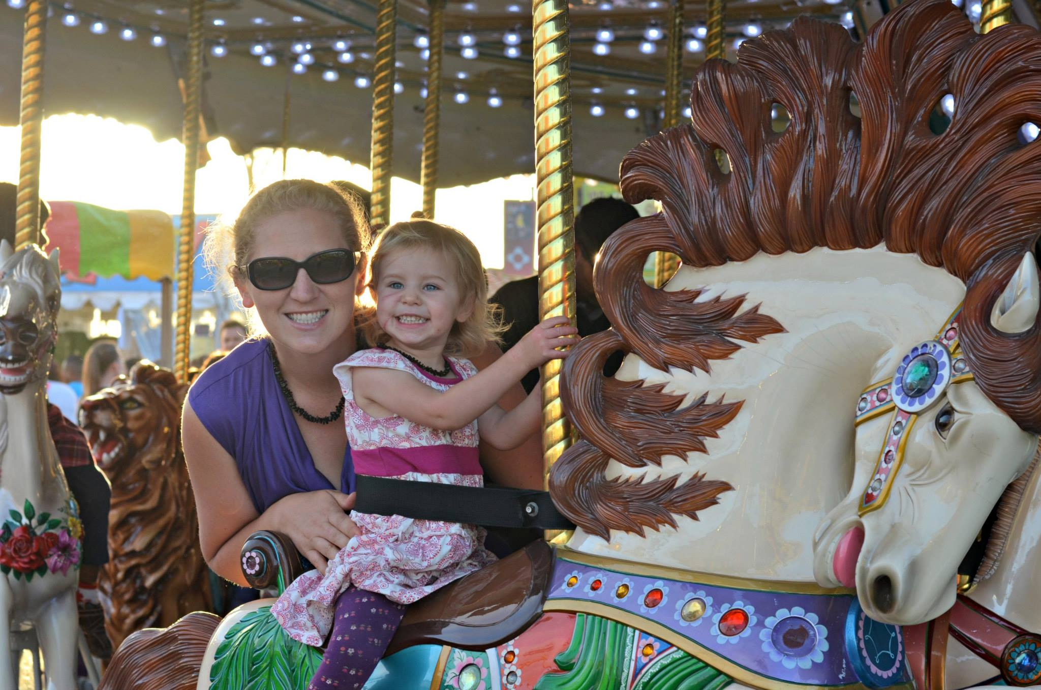 San Diego County Fair Carousel 2013