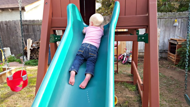 Finding Teachable Moments in the back yard