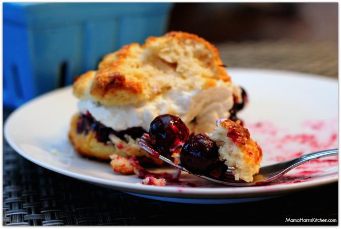 blueberry-coconut-shortcake