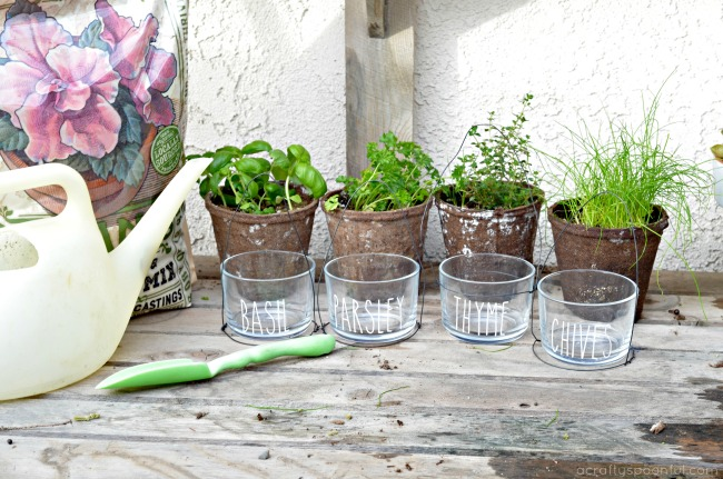 Indoor hanging herb garden diy indoor herb garden glass pots with save workwithnaturefo