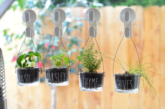 Easy to Make DIY Indoor Hanging Herb Garden for the Kitchen